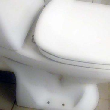 Trouble flushing?