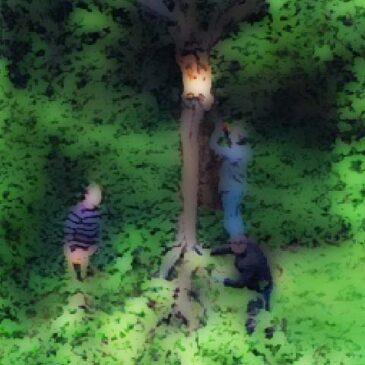 Knækket træ
