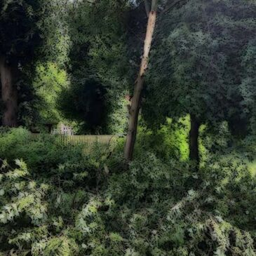 Knækket gren